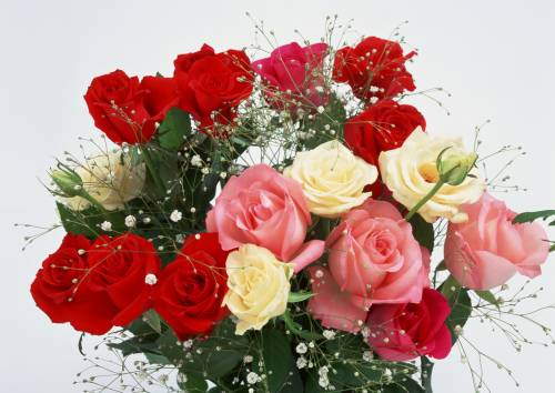 Картинка букет роз на рабочий стол