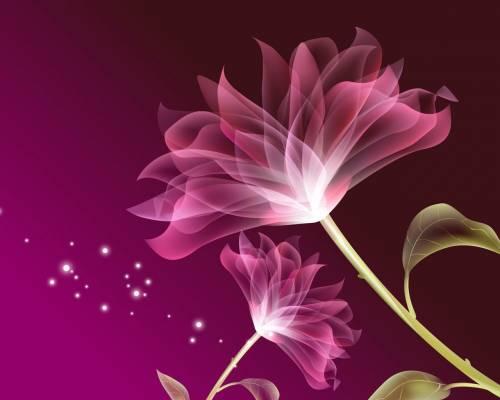 заставки на телефон цветы фон № 56191 загрузить